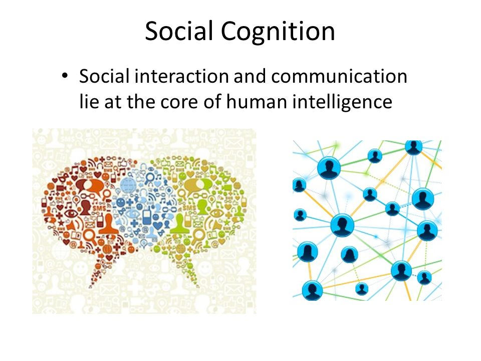 Dynamics of Social Cognition Drew Abney and Christopher Kello Cognitive and Information Sciences