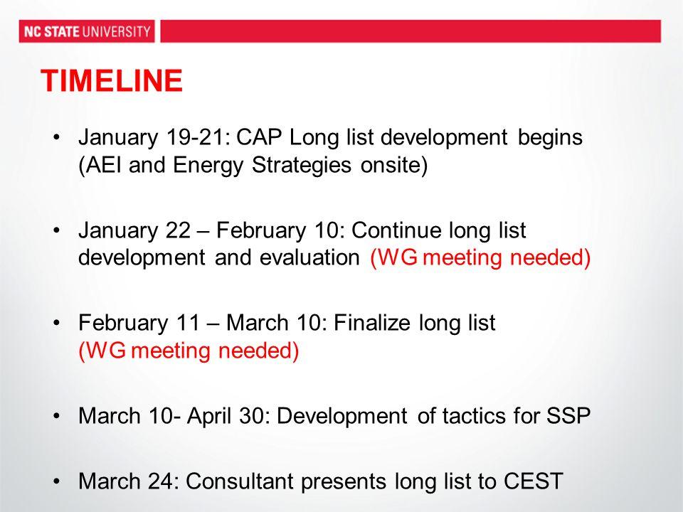 TIMELINE January 19-21: CAP Long list development begins (AEI and Energy Strategies onsite) January 22 – February 10: Continue long list development a
