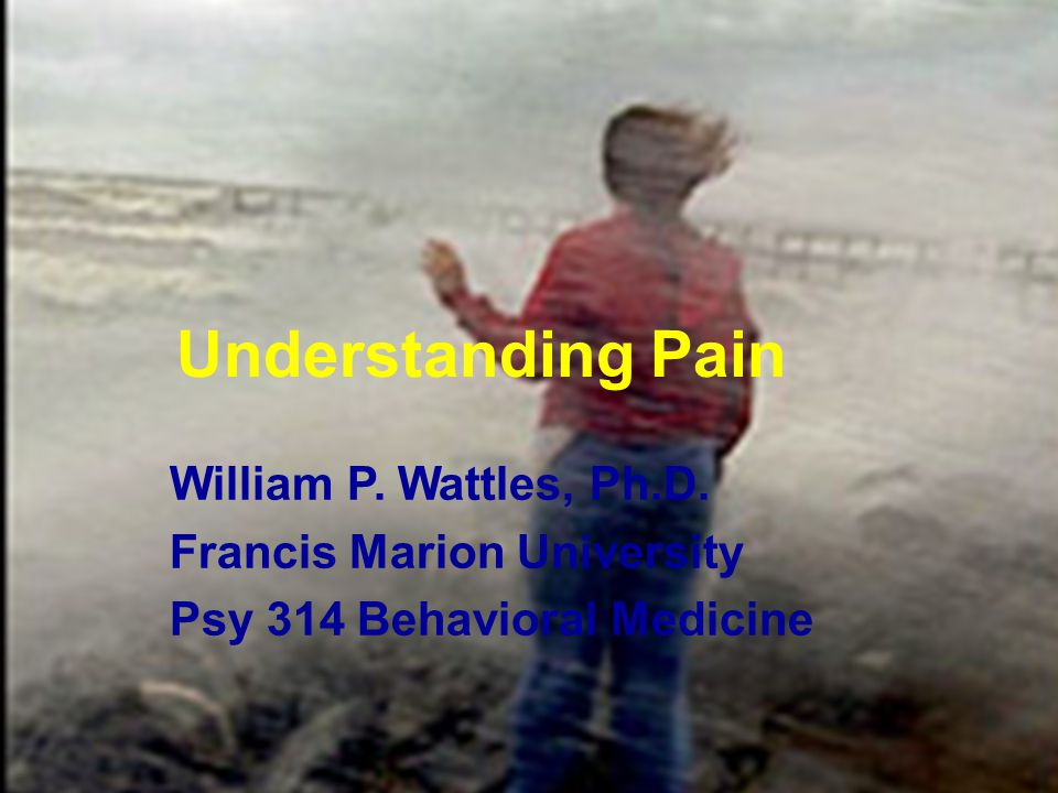 1 Understanding Pain William P.Wattles, Ph.D.