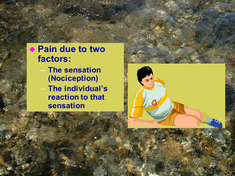 22 u Pain due to two factors: –The sensation (Nociception) –The individual's reaction to that sensation