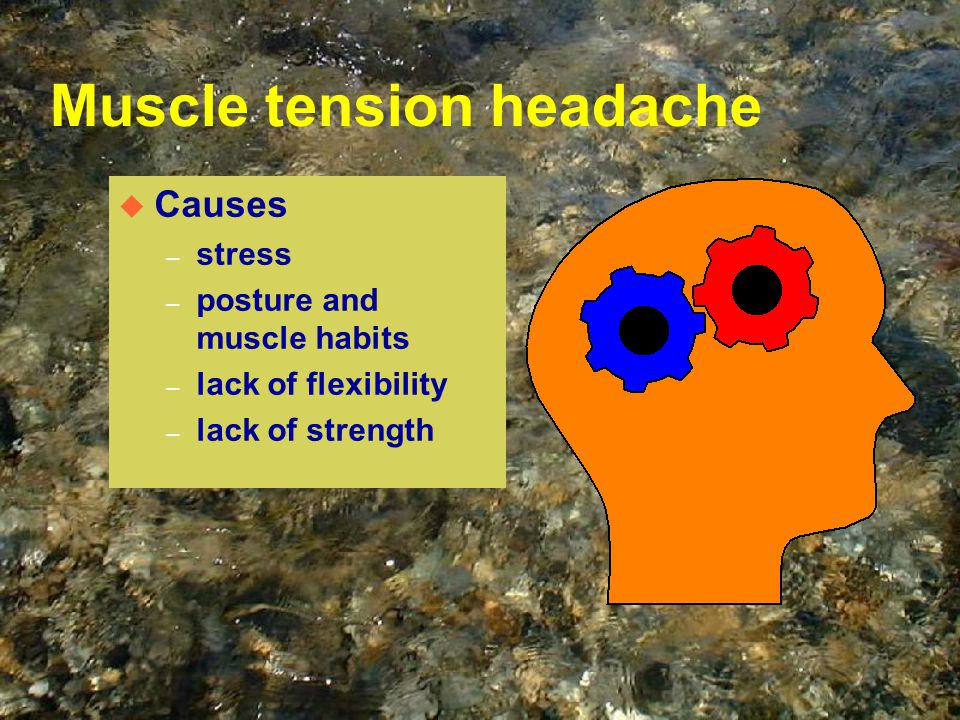 Muscle tension headache u Causes – stress – posture and muscle habits – lack of flexibility – lack of strength