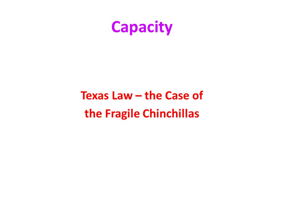 Capacity Texas Law – the Case of the Fragile Chinchillas