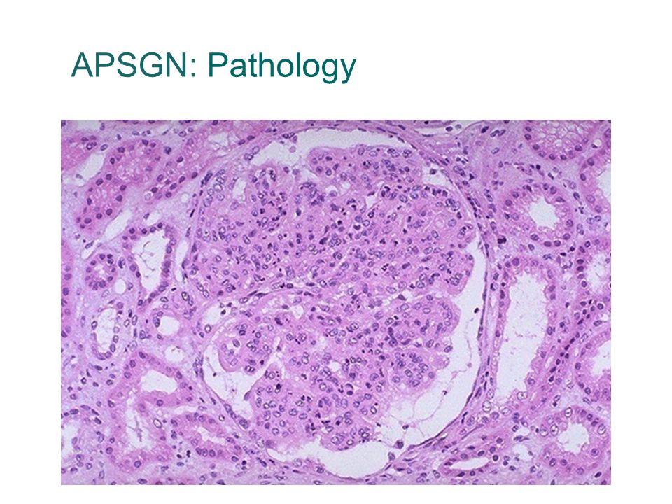 APSGN: Pathology 35