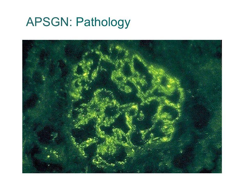 APSGN: Pathology 36