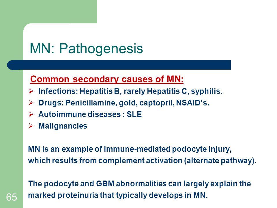 65 MN: Pathogenesis Common secondary causes of MN:  Infections: Hepatitis B, rarely Hepatitis C, syphilis.