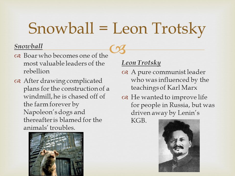  Snowball = Leon Trotsky Snowball  Boar who becomes one of the most valuable leaders of the rebellion  After drawing complicated plans for the construction of a windmill, he is chased off of the farm forever by Napoleon's dogs and thereafter is blamed for the animals' troubles.