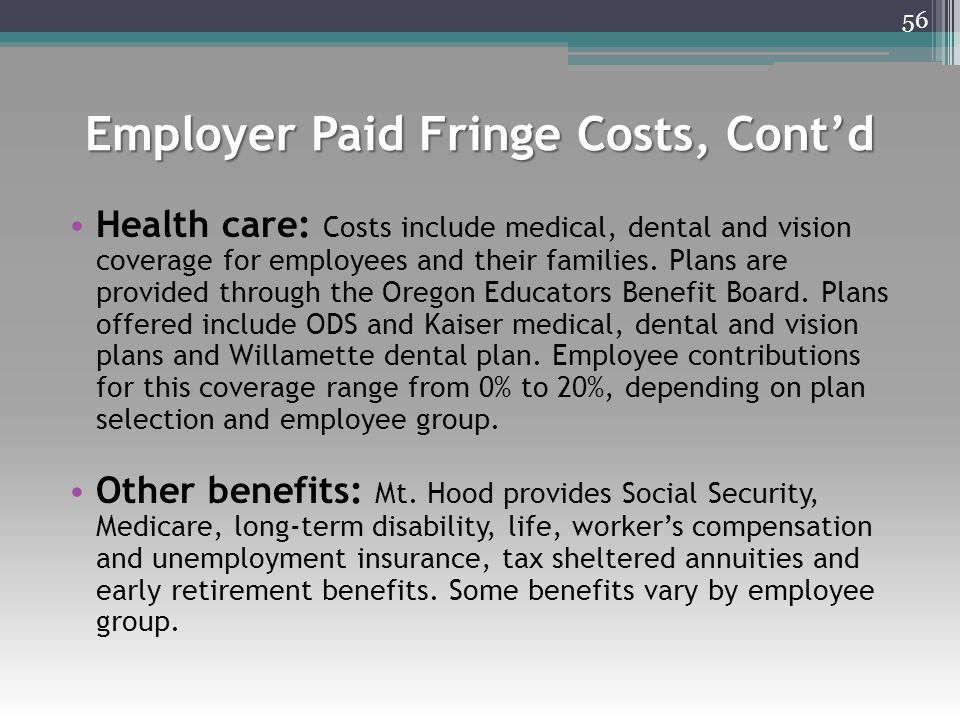 Employer Paid Fringe Costs, Cont'd Health care: Costs include medical, dental and vision coverage for employees and their families. Plans are provided