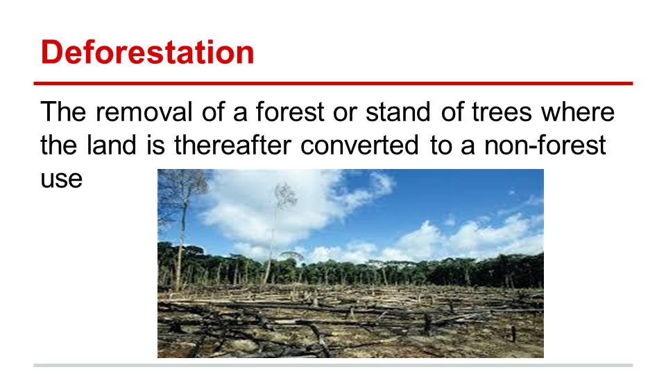 Deforestation The removal of a forest or stand of trees where the land is thereafter converted to a non-forest use