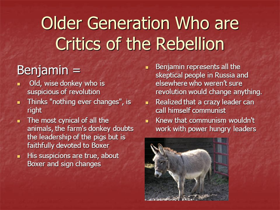 Older Generation Who are Critics of the Rebellion Benjamin = Old, wise donkey who is suspicious of revolution Old, wise donkey who is suspicious of re