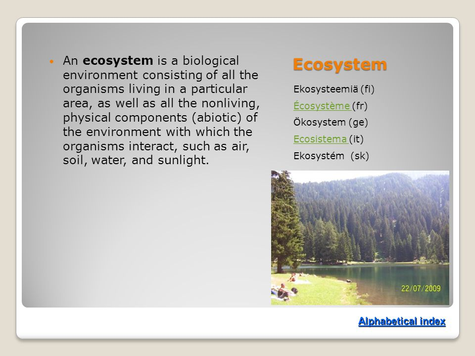 Ecosystem Ekosysteemiä (fi) Écosystème Écosystème (fr) Ökosystem (ge) Ecosistema Ecosistema (it) Ekosystém (sk) An ecosystem is a biological environment consisting of all the organisms living in a particular area, as well as all the nonliving, physical components (abiotic) of the environment with which the organisms interact, such as air, soil, water, and sunlight.