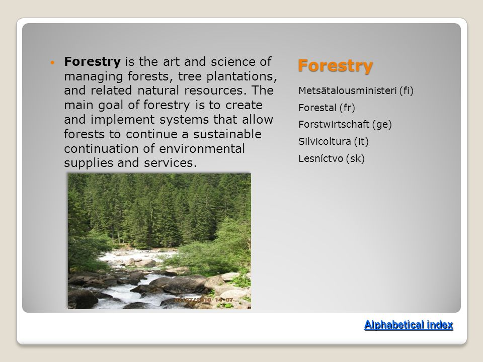 Forestry Metsätalousministeri (fi) Forestal (fr) Forstwirtschaft (ge) Silvicoltura (it) Lesníctvo (sk) Forestry is the art and science of managing forests, tree plantations, and related natural resources.