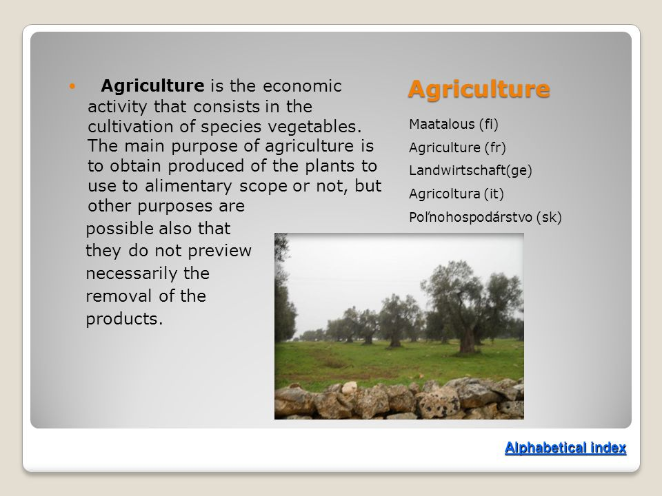 Agriculture Maatalous (fi) Agriculture (fr) Landwirtschaft(ge) Agricoltura (it) Poľnohospodárstvo (sk) Agriculture is the economic activity that consists in the cultivation of species vegetables.