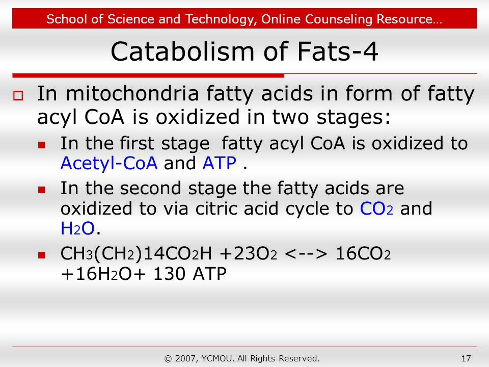 School of Science and Technology, Online Counseling Resource… © 2007, YCMOU. All Rights Reserved.17 Catabolism of Fats-4  In mitochondria fatty acids