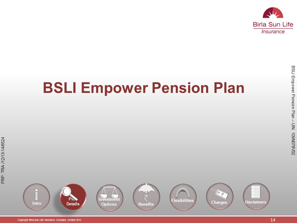 Copyright Birla Sun Life Insurance Company Limited 2012 14 BSLI Empower Pension Plan – UIN: 109N078V02 PRP: TRA /12/13-14/6524 Intro Plan Details Benefits Investment Options Flexibilities Charges Disclaimers BSLI Empower Pension Plan
