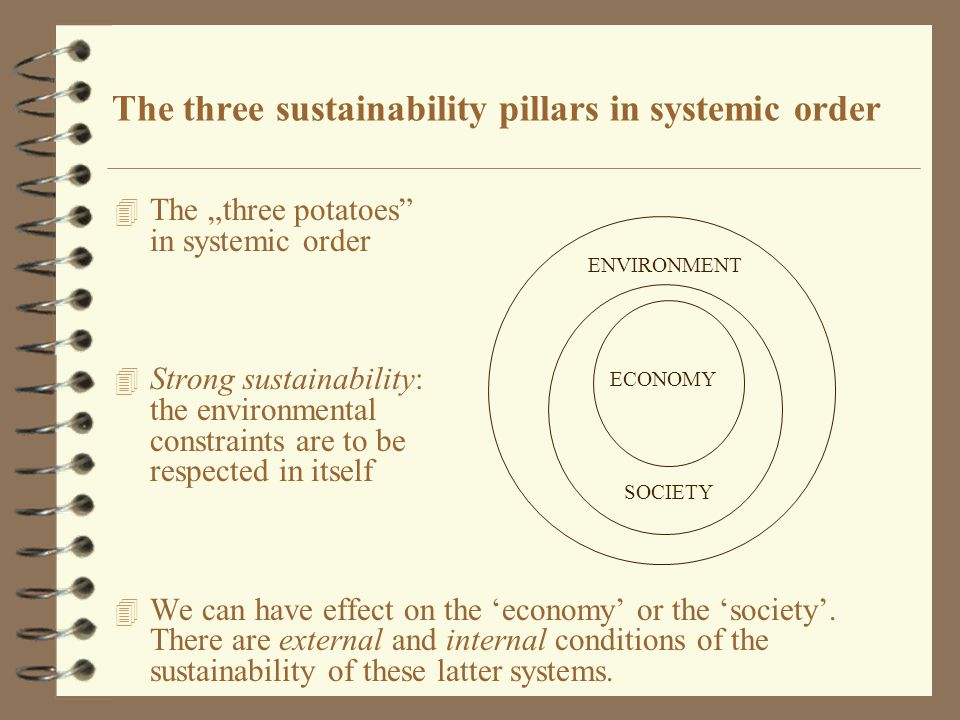 "4 The ""three potatoes in systemic order 4 Strong sustainability: the environmental constraints are to be respected in itself 4 We can have effect on the 'economy' or the 'society'."