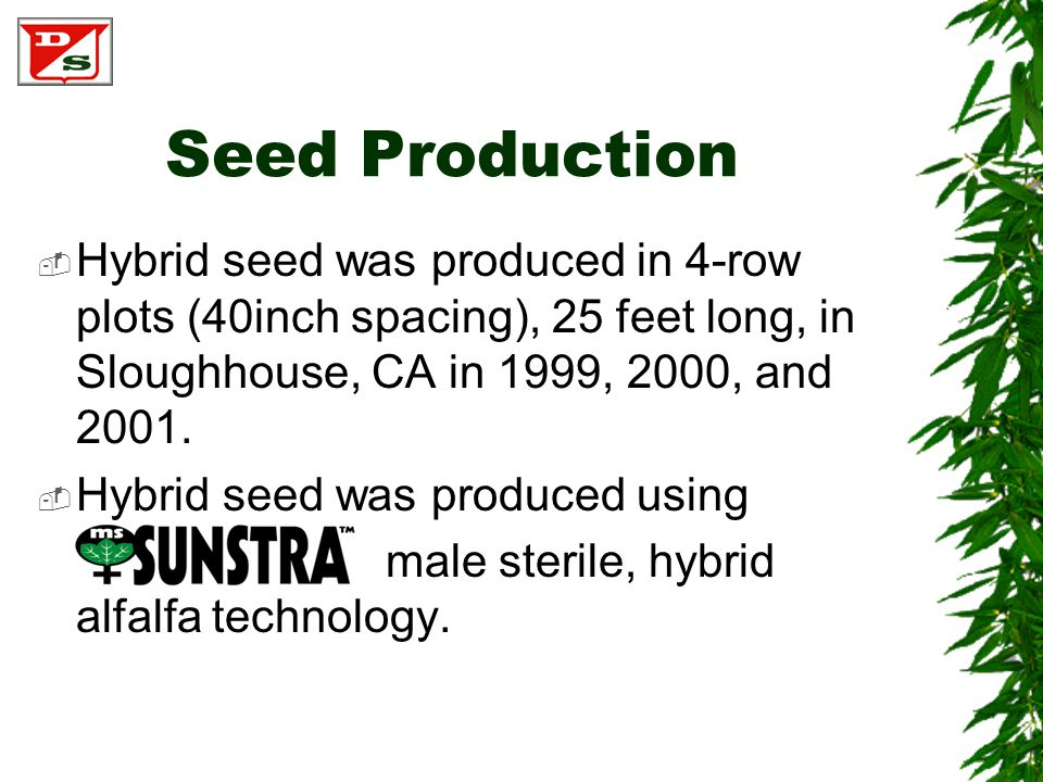 Seed Production  Hybrid seed was produced in 4-row plots (40inch spacing), 25 feet long, in Sloughhouse, CA in 1999, 2000, and 2001.