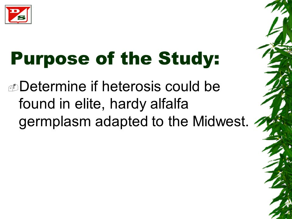 Purpose of the Study:  Determine if heterosis could be found in elite, hardy alfalfa germplasm adapted to the Midwest.