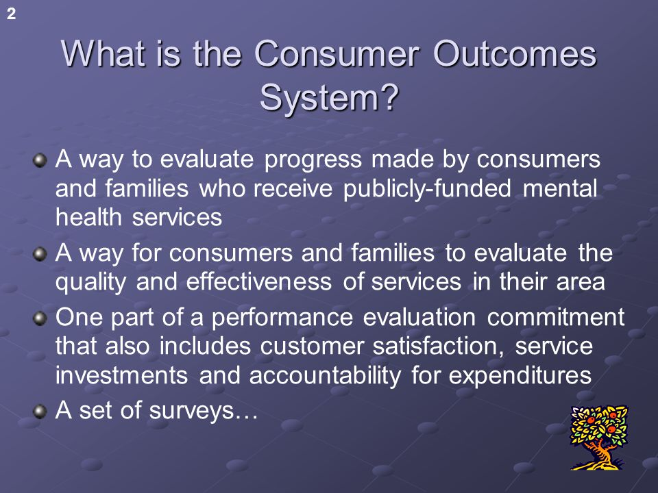 2 What is the Consumer Outcomes System.