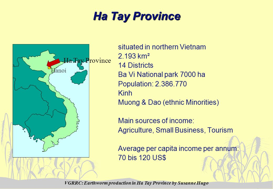 VGRRC: Earthworm production in Ha Tay Province by Susanne Hugo You can find us in the WWW: For example at: http://www.fao.org/ag/aga/agap/lps/dairy/fdp/vietnam.htm http://www.kehlbach.de/ or contact by e-mail: binhbavi@netnam.vnbinhbavi@netnam.vn by Telephone: 0084 (0) 34 838 341 via Fax: 0084 (0) 34 838 889