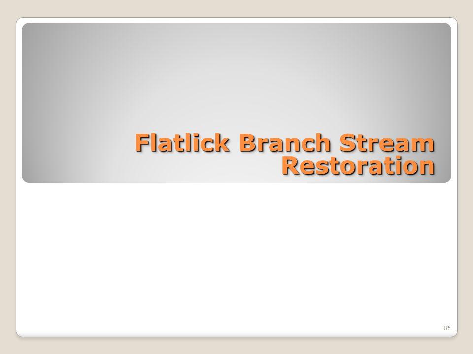 Flatlick Branch Stream Restoration 86