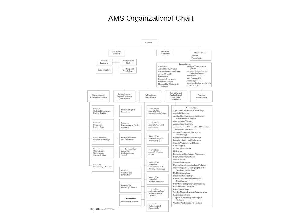 AMS Organizational Chart