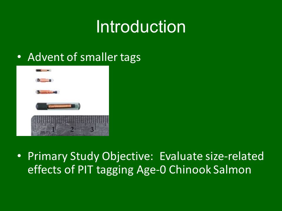 Study Objectives Study I Objectives: – Compare survival, growth, and tag retention within three size groups of fish implanted with 9-mm tags Study II Objectives: – Test for tagging effects on survival, temporal changes in growth, and tag retention in one size group (40–49 mm) of fish tagged with either the 8-mm or 9-mm tags, and in two size groups (50–59 mm, 60–69 mm) of fish tagged with 8-mm, 9-mm, or 12-mm tags