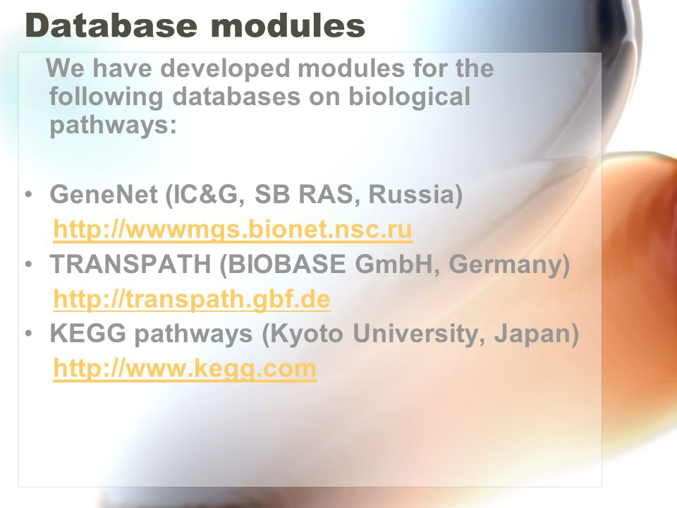 Diagram viewer Information from different databases on biological pathways can be mapped into objects from BioUML meta model.