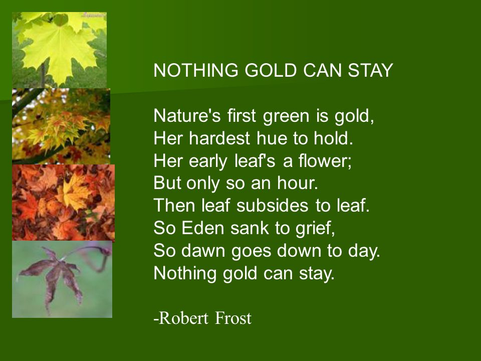 Nothing Gold Can Stay …  was written by Robert Frost.