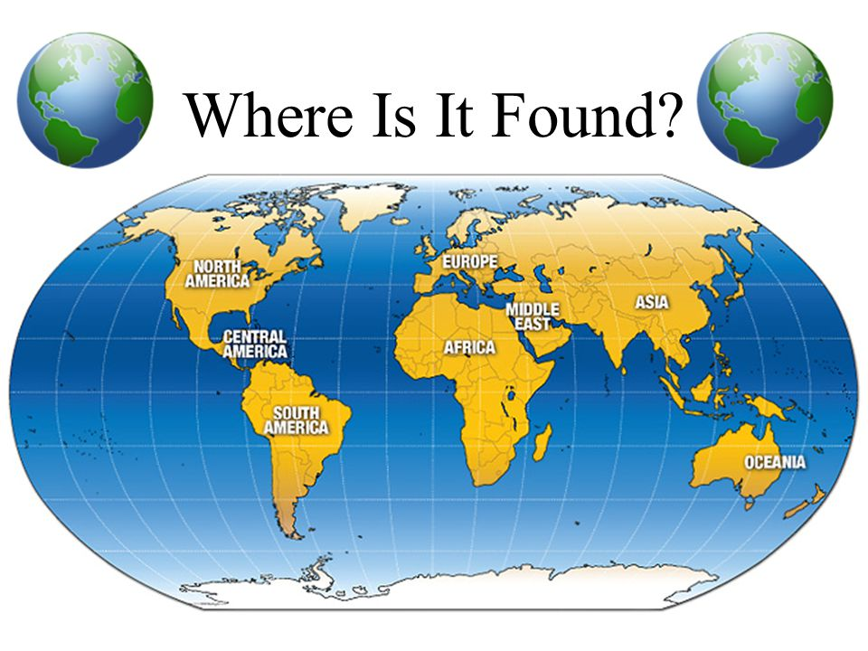 Where Is It Found