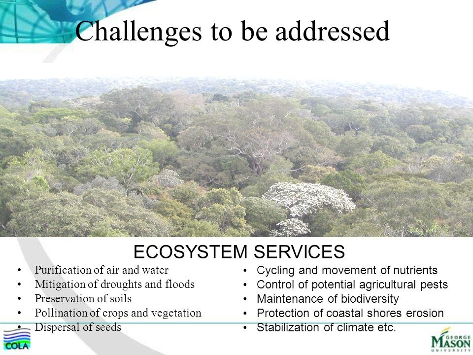 Challenges to be addressed Purification of air and water Mitigation of droughts and floods Preservation of soils Pollination of crops and vegetation Dispersal of seeds Cycling and movement of nutrients Control of potential agricultural pests Maintenance of biodiversity Protection of coastal shores erosion Stabilization of climate etc.