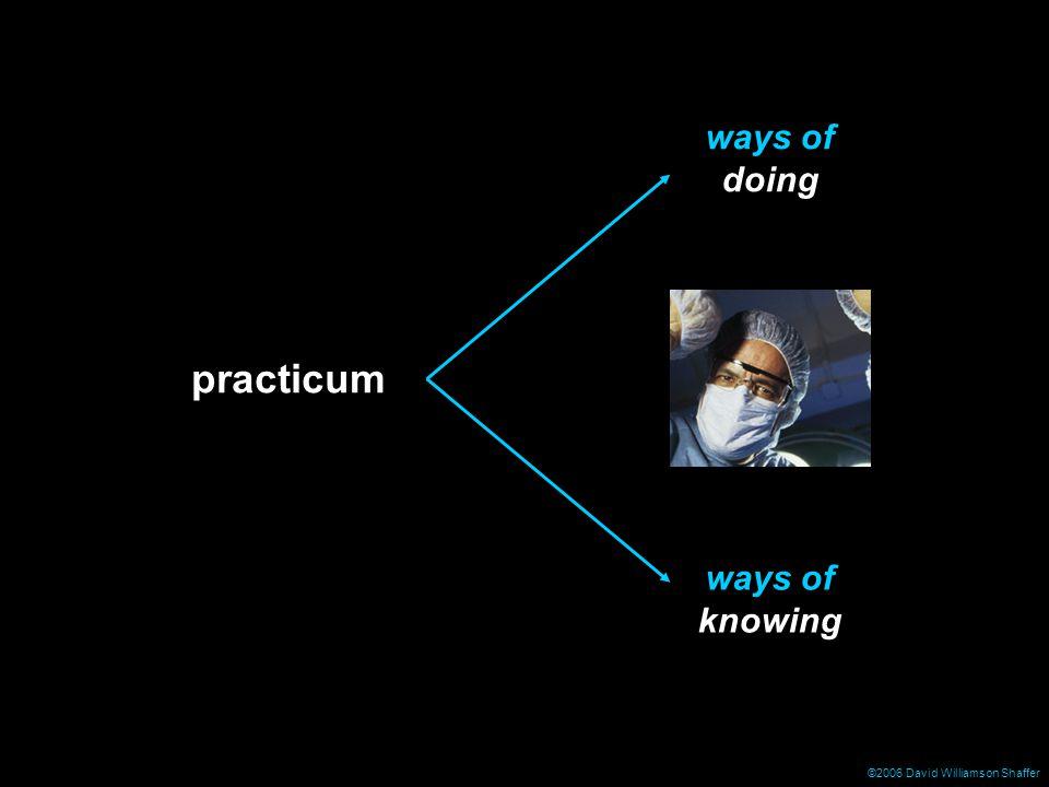 ©2006 David Williamson Shaffer practicum ways of doing ways of knowing