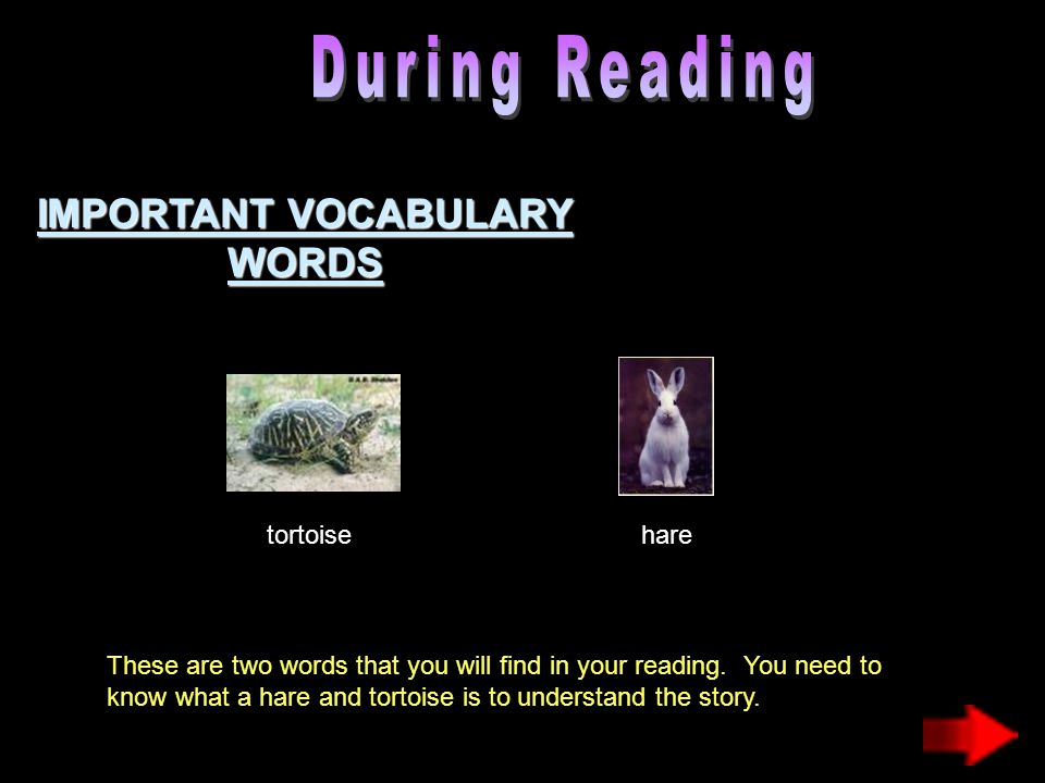 IMPORTANT VOCABULARY WORDS tortoisehare These are two words that you will find in your reading. You need to know what a hare and tortoise is to unders