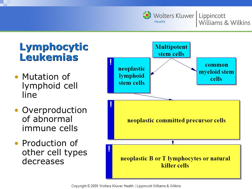 Copyright © 2009 Wolters Kluwer Health | Lippincott Williams & Wilkins Lymphocytic Leukemias Mutation of lymphoid cell line Overproduction of abnormal immune cells Production of other cell types decreases Multipotent stem cells mutation in lymphoid stem cells common myeloid stem cells neoplastic committed precursor cells abnormal B or T lymphocytes or Natural Killer cells neoplastic B or T lymphocytes or natural killer cells neoplastic lymphoid stem cells