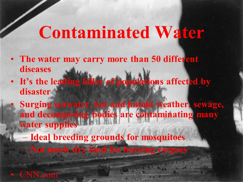 Contaminated Water The water may carry more than 50 different diseases It's the leading killer of populations affected by disaster Surging seawater, h