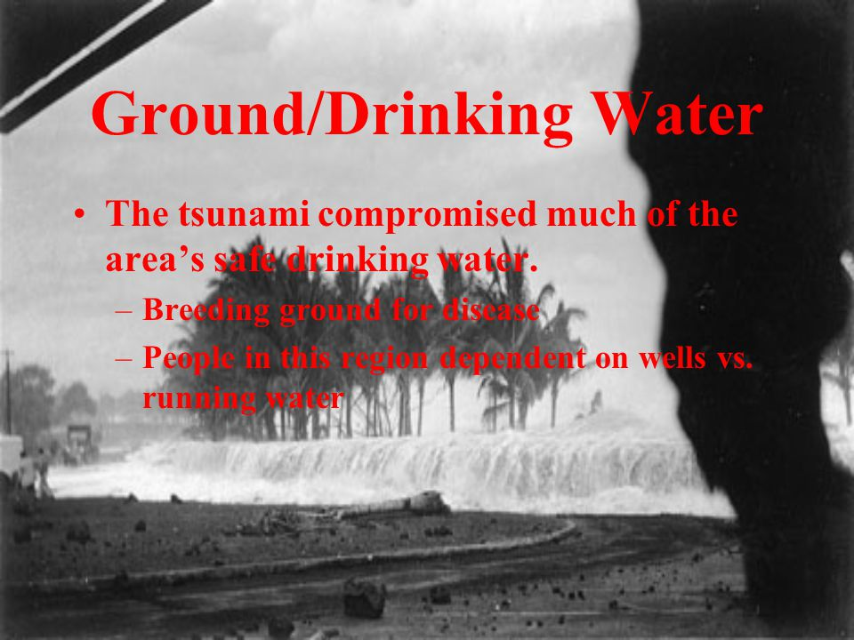 Ground/Drinking Water The tsunami compromised much of the area's safe drinking water. –Breeding ground for disease –People in this region dependent on