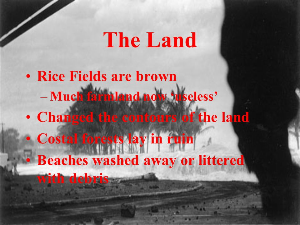 The Land Rice Fields are brown –Much farmland now 'useless' Changed the contours of the land Costal forests lay in ruin Beaches washed away or littere