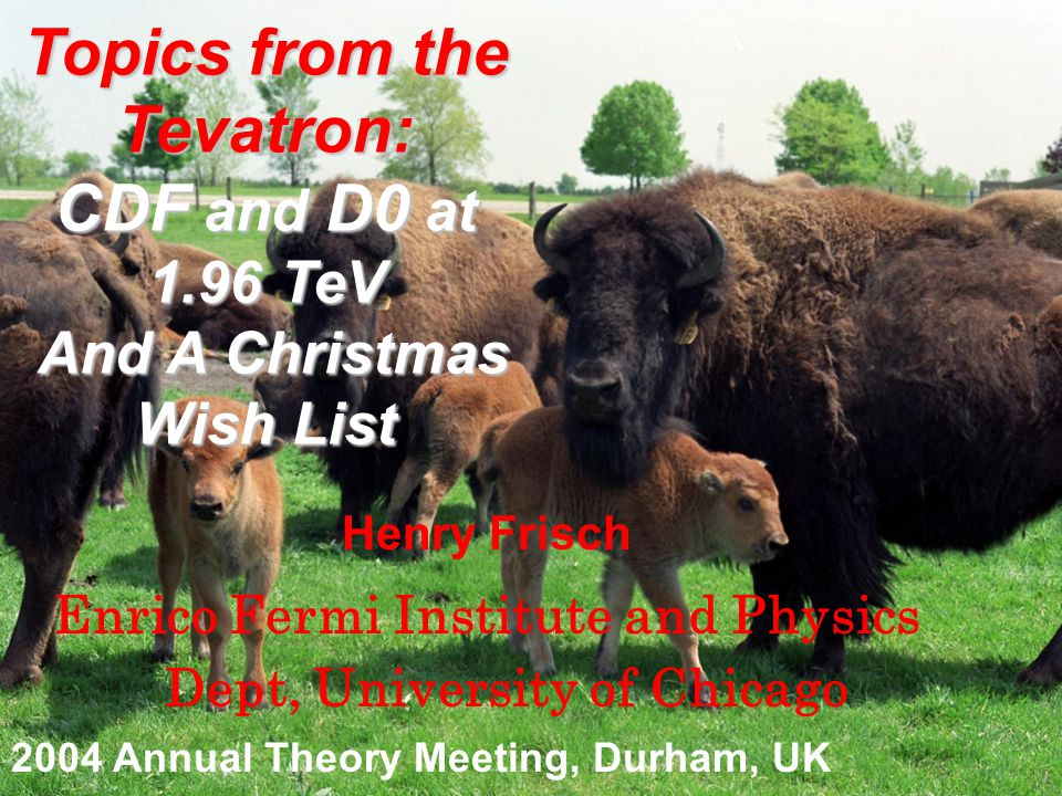 Topics from the Tevatron: CDF and D0 at 1.96 TeV And A Christmas Wish List And A Christmas Wish List Henry Frisch Enrico Fermi Institute and Physics Dept, University of Chicago 2004 Annual Theory Meeting, Durham, UK