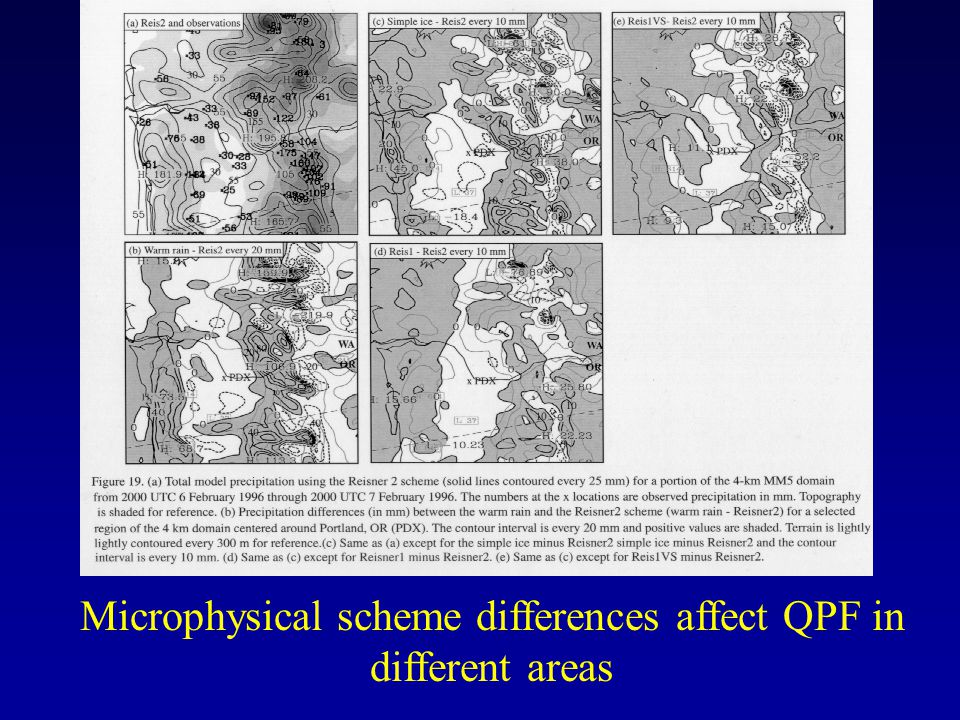 Microphysical scheme differences affect QPF in different areas