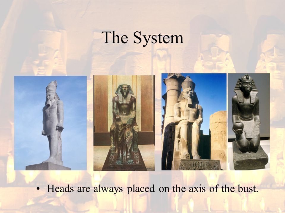 The System Heads are always placed on the axis of the bust.