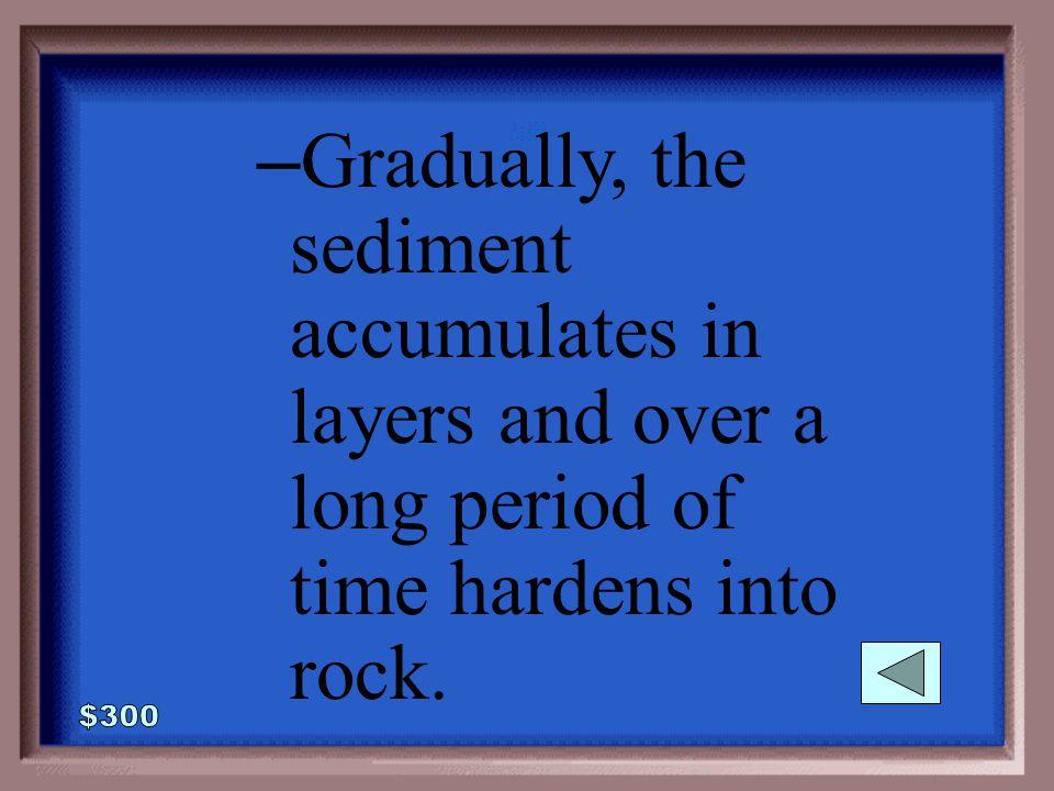 1-300 How do sediments form a rock