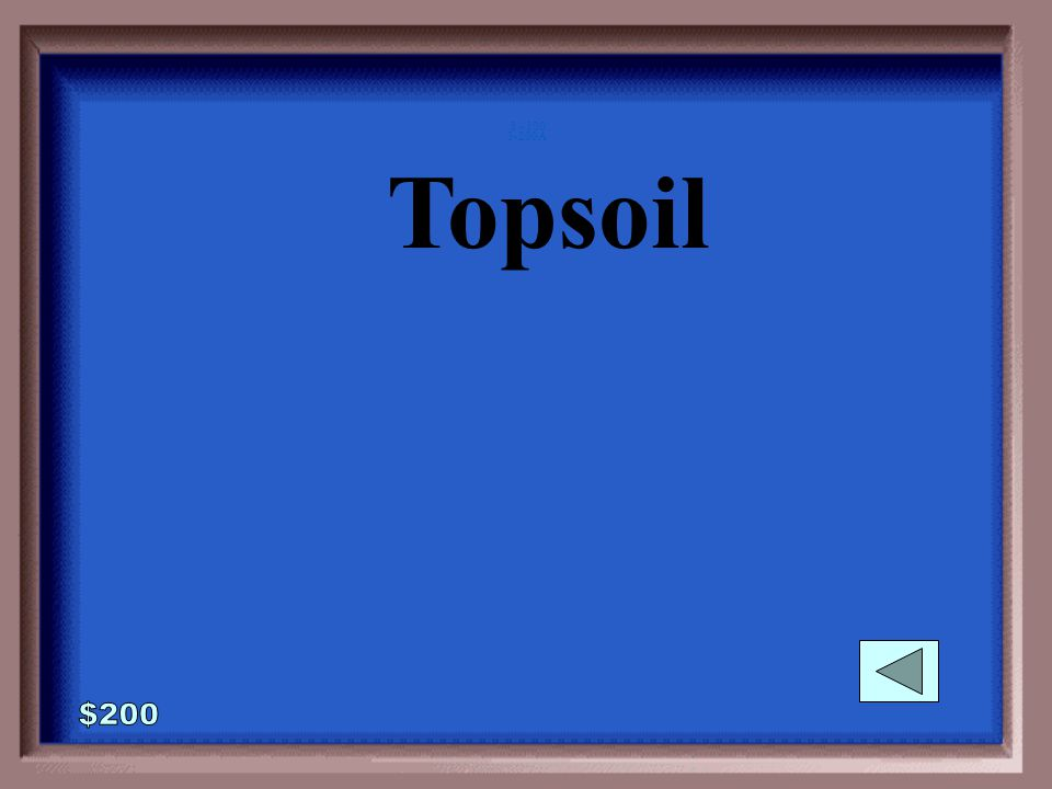 3-200 A common name for the layer of the soil called A Horizon is: