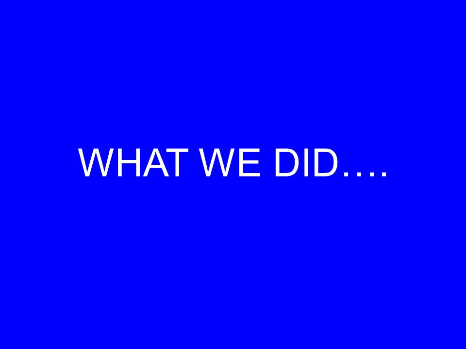 WHAT WE DID….