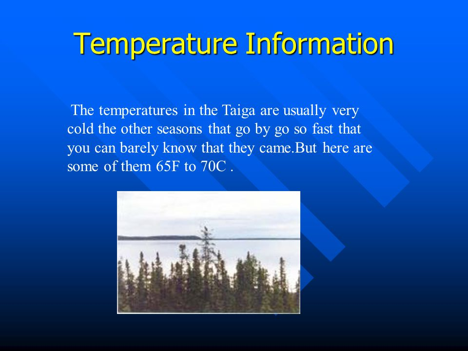 The precipitation Information In the Taiga it rarely changes seasons.about three times every two months.Because it is in an area where is hardly rains but when it rains it doesn't really need it cause of all the melting snow in the Taiga