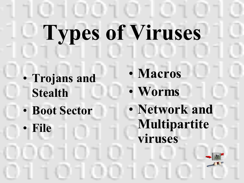 Viral Facts Viruses can replicate. All computer viruses are manmade.