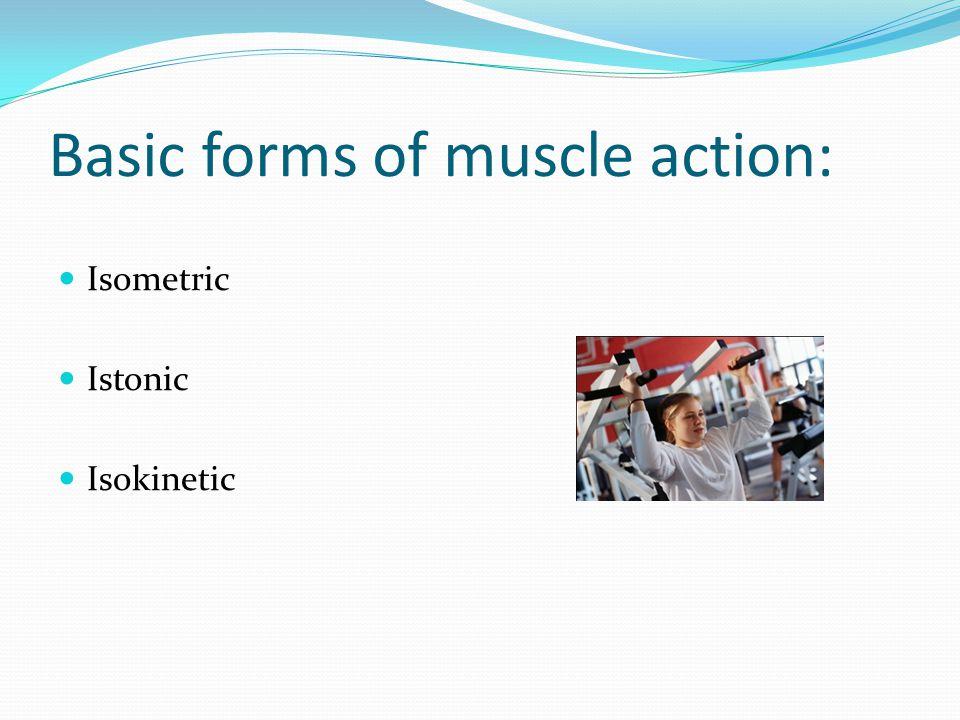 Basic forms of muscle action: Isometric Istonic Isokinetic