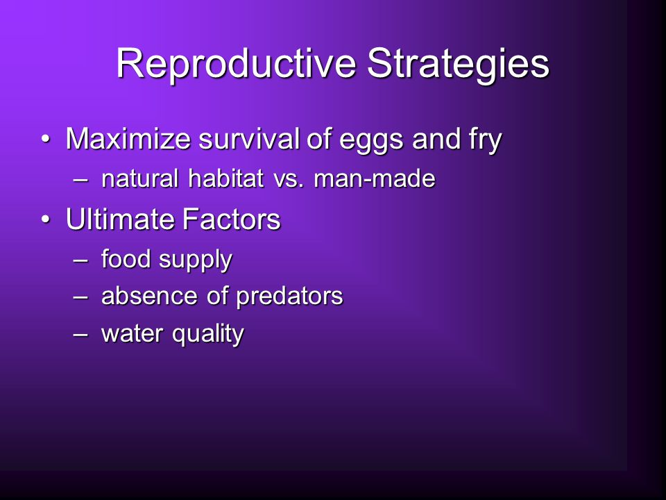 Reproductive Strategies Maximize survival of eggs and fryMaximize survival of eggs and fry – natural habitat vs.