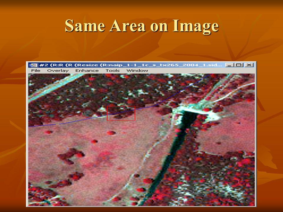 Same Area on Image