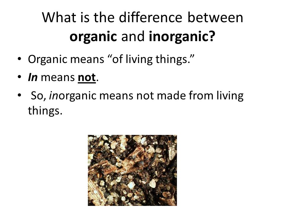 """What is the difference between organic and inorganic? Organic means """"of living things."""" In means not. So, inorganic means not made from living things."""
