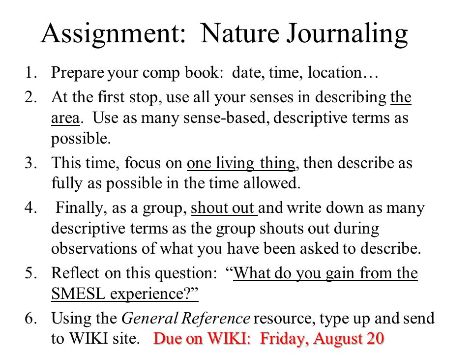 Assignment: Nature Journaling 1.Prepare your comp book: date, time, location… 2.At the first stop, use all your senses in describing the area.