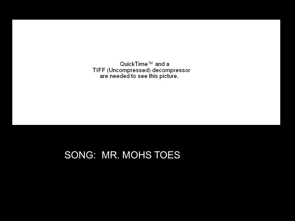 SONG: MR. MOHS TOES